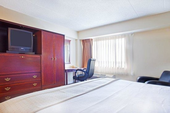 Rolling Meadows, IL : King Bed Guest Room