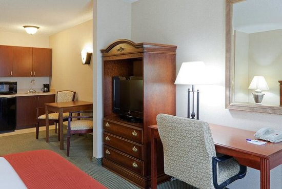 Holiday Inn Express Hotel & Suites Auburn: Other