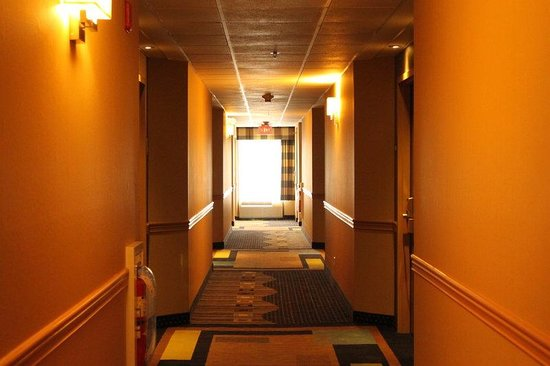 Holiday Inn Express Lewisburg/New Columbia: Hallway