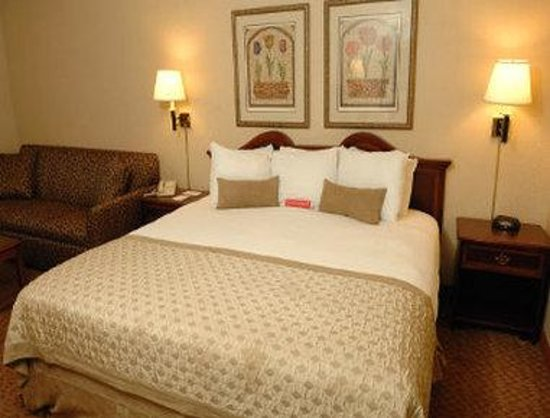 Ramada Inn Syracuse: Standard King Bed Room