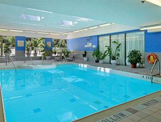 Ramada Plaza Toronto: Pool
