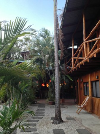 Playa Grande Inn: view
