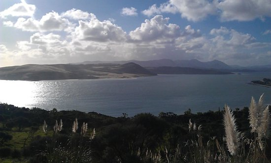 Northland Region, Neuseeland: Sand dunes at Hokianga Harbour