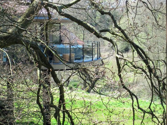 Chewton Glen Hotel & Spa: Our Treehouse Through The Trees