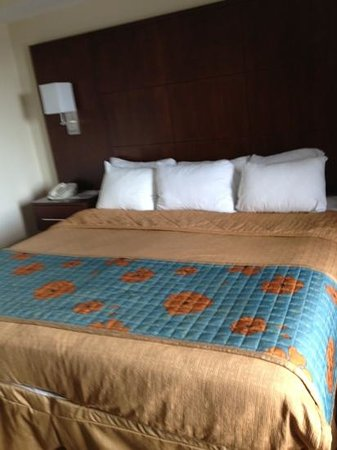Ramada Plaza Resort & Suites International Drive: beds were pretty good. comfy pillows.!