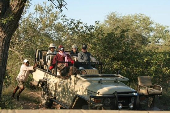 Naledi Bushcamp and Enkoveni Camp: Game drive