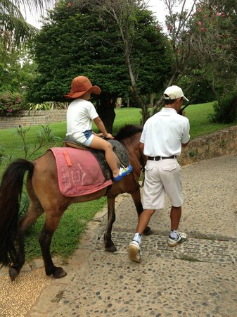 Victoria Phan Thiet Beach Resort &amp; Spa: Horse riding activity