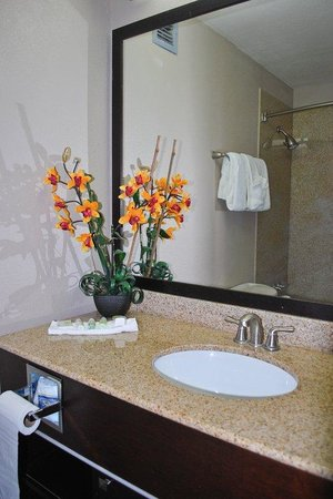 The Hotel Acadiana : Bathroom Vanity