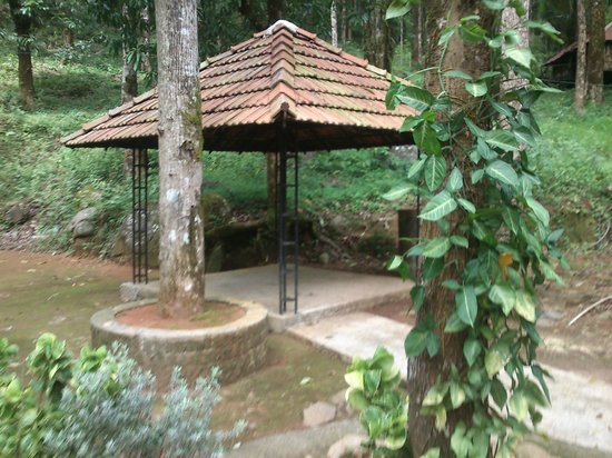 Blue Ginger Wayanad Resorts: recreation