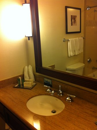 Hilton New Orleans Riverside: bathroom
