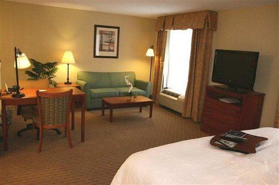 Cedar Rapids, IA: King Suite Room