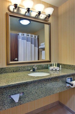 Holiday Inn Express Hotel & Suites Dewitt (Syracuse): Guest Bathroom