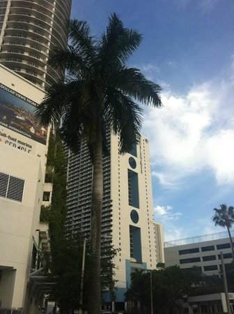 Doubletree by Hilton Grand Hotel Biscayne Bay: Hotel from across the road
