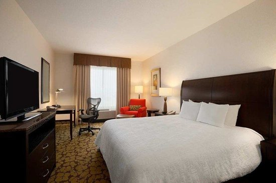 Hilton Garden Inn Edmonton International Airport: King Bedroom