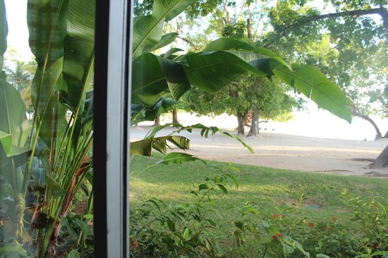 Hedonism II: view of prude beach from room