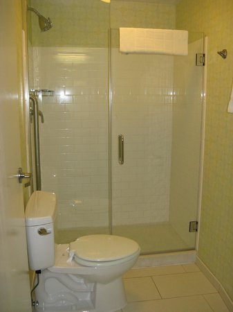 Springhill Suites Chicago Downtown / River North: Salle de bain