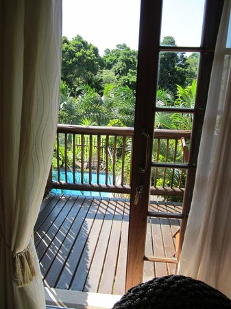 Elephant Coast Guest House: view of our balcony