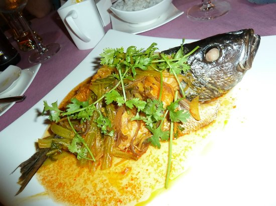 Fusion Maia Resort: Fantastischer red Snapper