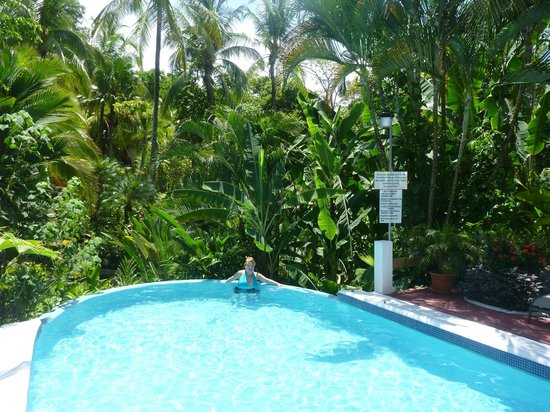 Falls Resort at Manuel Antonio: Awesome views from everywhere
