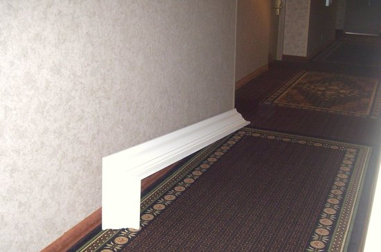 Plymouth, Minnesota: Large piece of window covering laying in the hall during our entire stay