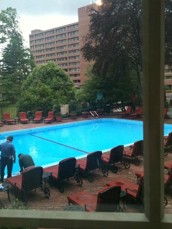 Washington Marriott Wardman Park Hotel: Well-kept pool