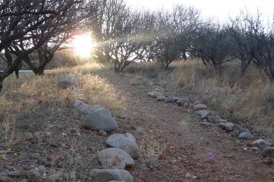 Rio Rico, AZ: Rustic walking trail on the property