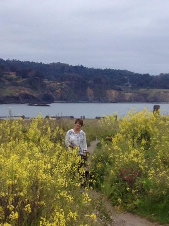 Mendocino Hotel and Garden Suites: Wild flowers were amazing!