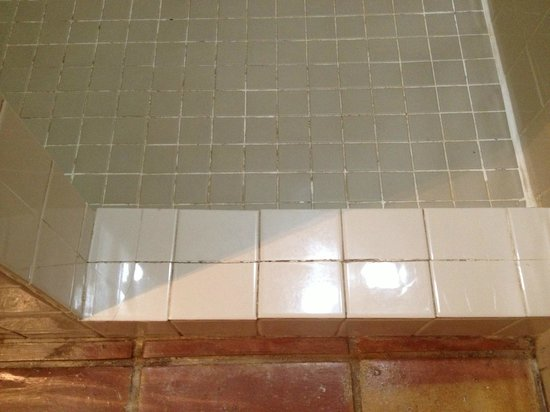 Caribbean Paradise Inn: mold in bathroom tiles