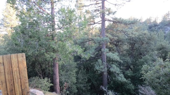 Idyllwild, CA: View from room