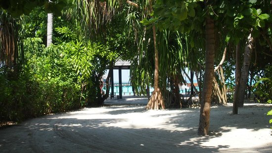 Iru Fushi Beach & Spa Resort: Walkway through the island