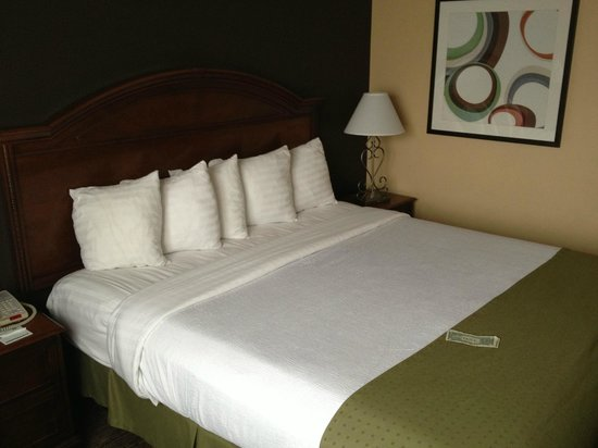 Holiday Inn Hotel & Suites Anaheim (1 BLK/Disneyland): Room