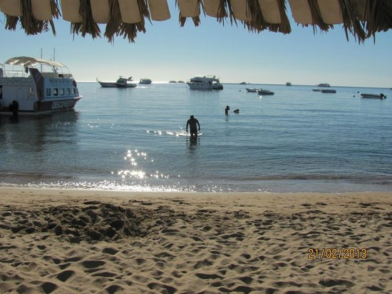 Hilton Sharm El Sheikh Fayrouz Resort: Beach