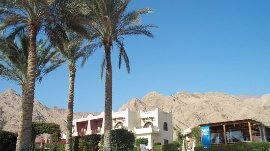 Tropitel Dahab Oasis: Beautiful view from front of hotel
