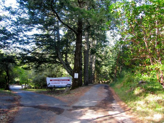 Mountain Home Ranch: Entrance