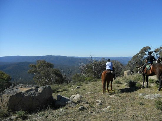 Jindabyne bed and breakfasts