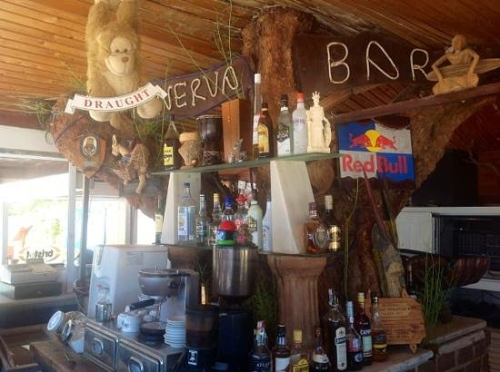 Minerva Beach: The tree bar!