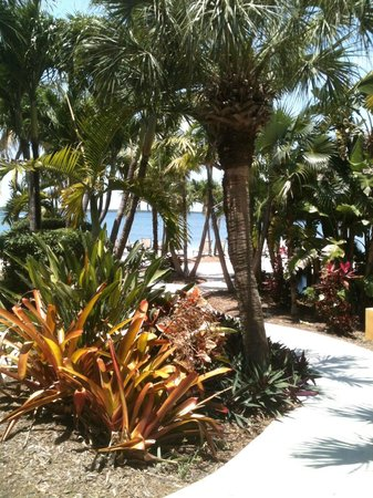 Hampton Inn Key Largo: Path from my room to the beach