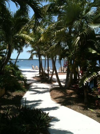 Hampton Inn Key Largo: Pathway to the beach