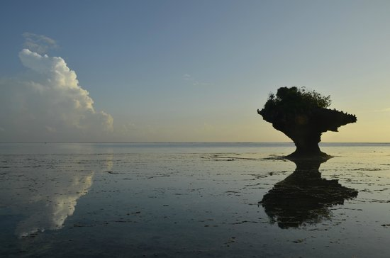 The Sands At Chale Island: Sunrise at Chale island