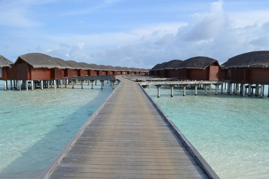 Anantara Dhigu Resort & Spa: Entry way to the water villas