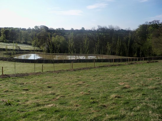 Axminster, UK: Private fishing lake for the Guests