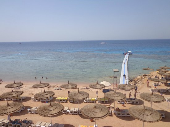 Reef Oasis Beach Resort: vista dal ristorante grill