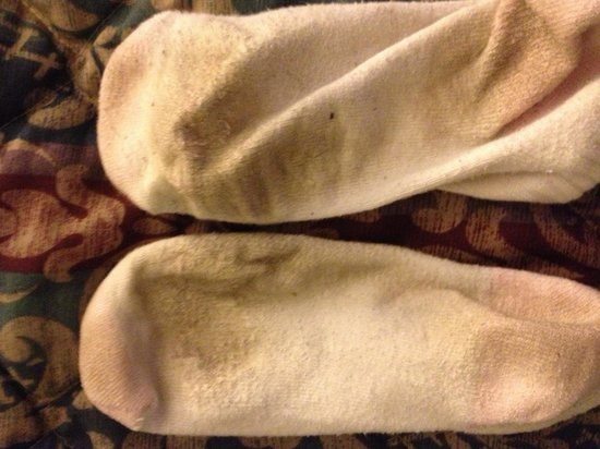 Super 8 Newburgh: Second pair of socks dirty from the carpet, the first pair were even worse