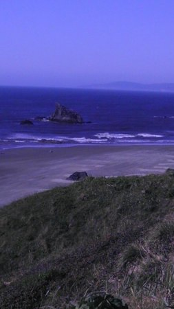 Bandon Beach Motel: Exceptional view from the motel