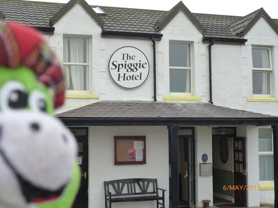 Mainland, UK: Nessie @ The Spiggie