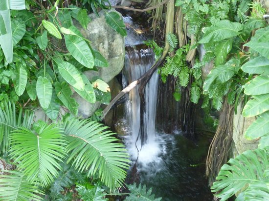 Galveston Island, TX: Waterfall
