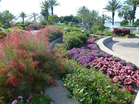 Galveston Island, TX: Grounds around the pyramids