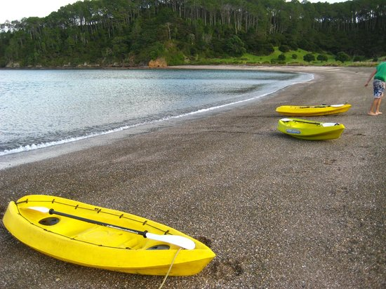 Paihia, Selandia Baru: Kayaking to Robertson Island (included)