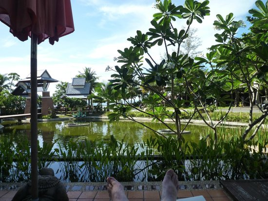 Salad Buri Resort & Spa: Le parc depuis le bungalow n°1