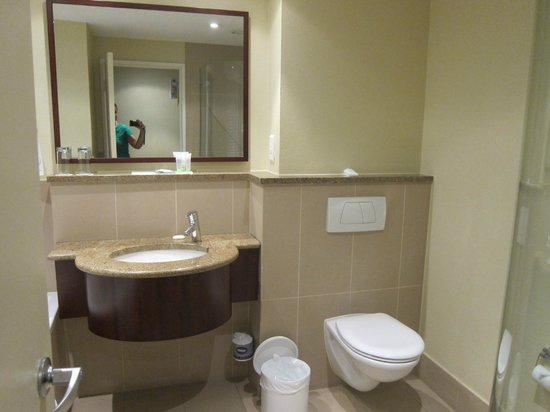 City Lodge OR Tambo Airport: sink and toilet